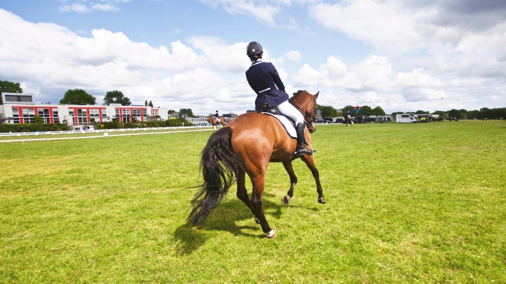 horseracingphoto
