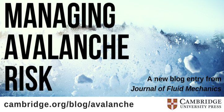 Managing avalanche risk