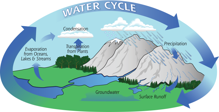 Water-Cycle-Art2A.png