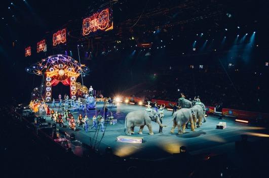 circus-828680_1920