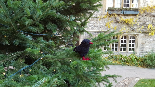 Chough in a Christmas tree